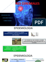 Tumores_Cerebrales_Pedraza.pdf