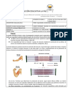 Guia de clase 1 10mo.pdf