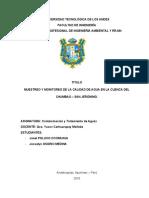 MONITOREO DE LA CALIDAD DEL AGUA CHUMBAO