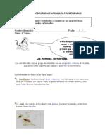 2º-basico-ciencia-GUIA-VERTEBRADOS (1)