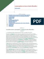 Consideraciones principales en torno al saber filosófico.docx