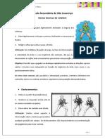 gestos tecnicos do voleibol_ines metelo