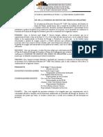 acta de constitucion de Comision de Riego 2013