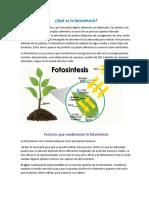 Que_es_la_fotosintesis.docx