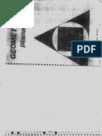Geometria Plana - Areias.pdf