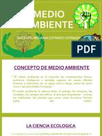 MEDIO AMBIENTE Y ECOOLOGIA.pptx
