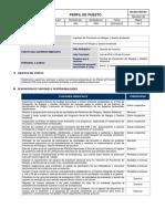 06. PDRyGA - INGENIERO DE PDR Y GA (PROYECTO) Rev 02