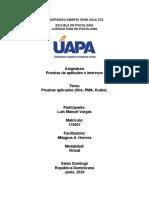Trabajo Final Aptitudes e intereses Luis Manuel Vargas 170057