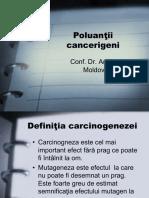 curs 3 (poluanti cancerigeni)