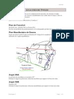 Analyse de Tweed et Sassouny-1