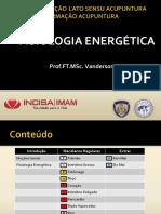 Aula - Fisiologia Energética - 2019-2 Mao.pdf