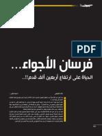 d5d932ec8 Yemenia Magazine 31 مجلة اليمنية