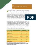 IDA-Mozambique-Portuguese.pdf