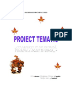 6proiecttematictoamna