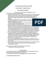 Proyecto Grado - Plan de Negocio 2020 - GUÍA