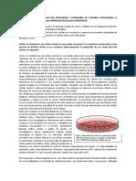 control del ciclo celular por oncogenes y genes supresores de tumores
