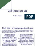 Carbonate Build Up