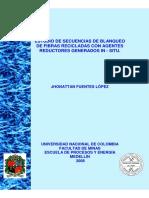 98773220_2009.pdf