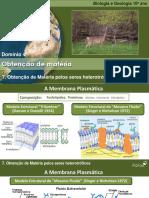 Obtenção de matéria seres heterotróficos.pdf