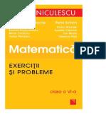 DocGo.Net-Matematica-Exercitii si probleme-clasa a 6 a Niculescu.pdf.pdf