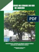 SANTANA, C.A.A. 2020 Estrangeiros na Cidade do Rio de Janeiro.pdf