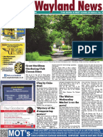 The Wayland News July 2020