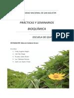 bioquimica practica 2 y 3.docx