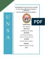 NOVENO LABORATORIO DE BROMATOLOGIA.docx