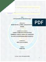Informe Belem Do Para.docx