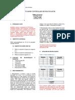 SCR -Informe