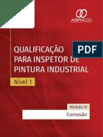 Corrosão Insp_pint_N1_Modulo 6.pdf
