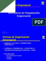 Organización Empresarial.pdf