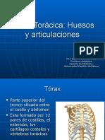 10-Pared Toráxica. Huesos y Articulaciones