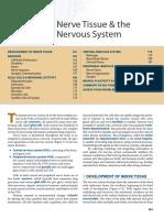 NERVOUS-BOOK
