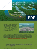 AMAZONIA COLOMBIANA SUJETO DE DERECHOS correg.