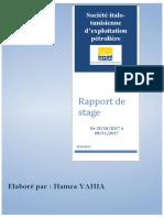 Rapport  SITEP hamza yahia 2013