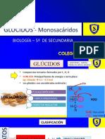 Glucidos- Monosacaridos - copia