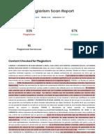 SER-Plagiarism-Report