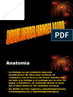 CONF. 2 LINF AGUDO.ppt