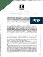 DIRECTIVA 0001.pdf