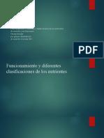 Funcionamiento y diferentes clasificaciones de los nutrientes