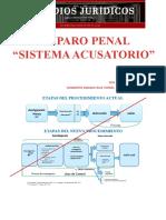 amparo-penal-sistema-acusatorio-2016.pptx