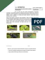 FICHA DE MATEMATICA (2).docx