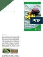 MANUAL DE PLAGA DEL FRIJOL PDF