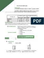 FISA DE DOCUMENTARE,TESTE.docx