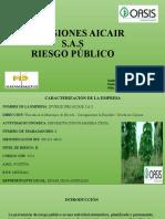 INVERSIONES AICAIR S PLAN DE PREVENCION