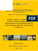 doctoral para vino de agraz.pdf