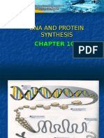 biology-DNA & protein synthesis Chapter 10