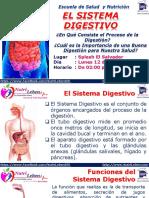 02 EL SISTEMA DIGESTIVO