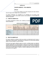Capitulo III-PC-ambiental.pdf